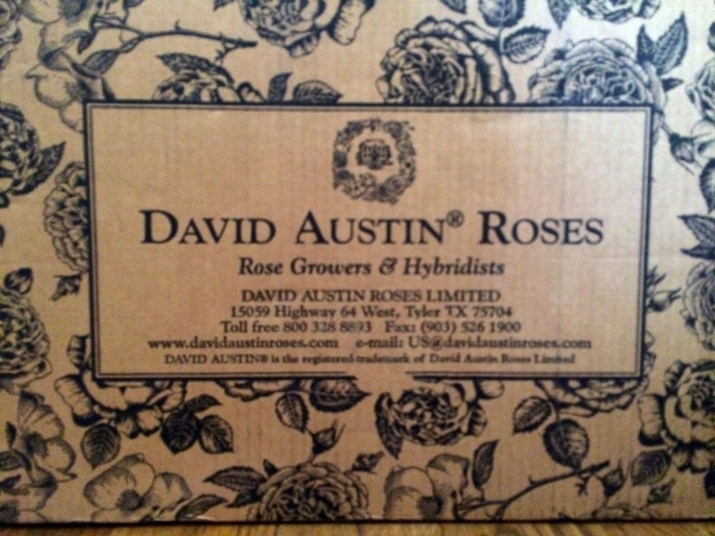 David Austin box arrival
