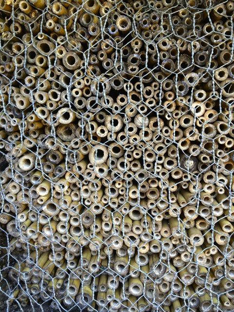 insect hotel III