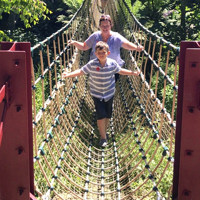 rope bridge across the jungle