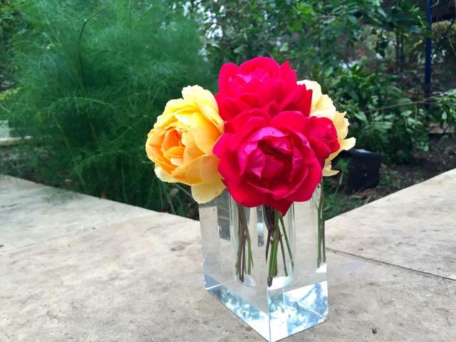 pink yellow rose II